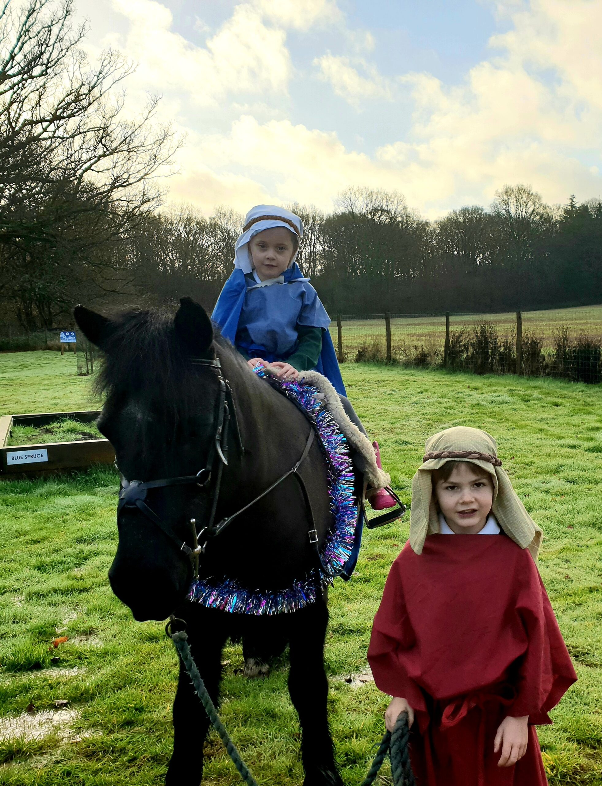 Acorns Nativity Excitement!